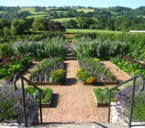 Win tickets to Toby Buckland's garden workshop at the Yeo Valley Organic Garden!