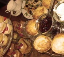 Afternoon tea pop up @ 40 Alfred Place: Sunday, December 1st