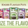 Brand new Knorr Flavour Pots – diverse and different!
