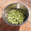 A guide to growing broad beans