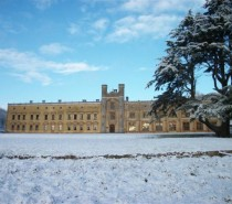 Producers needed for Ashton Court Christmas Food & Craft Fayre!