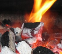 The Hot BBQ Debate: Gas or Coal? (Infographic)