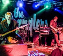 Grillstock announce The Stranglers as Sunday headliner