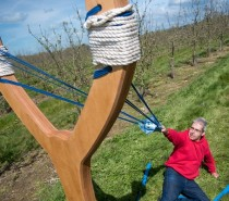 Free cider…catapulted by Orchard Pig!