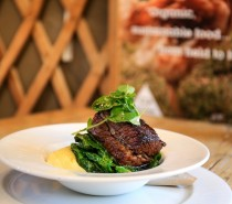 Yurt Lush opens new sustainable evening bistro concept
