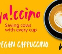 Enjoy a free vegan cappuccino on January 25th!