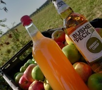 Help turn your surplus apples into Bristolian cider!